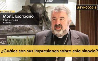 Desde el sinodo, D. Carlos Escribano, obispo de Logroño