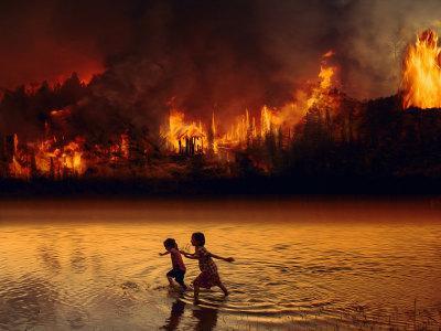 Ardiente verano – Biotropía