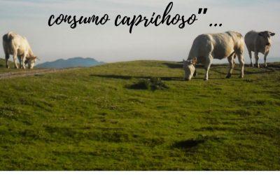 """""""Estas vacas tienen la culpa del cambio climático, no tu consumo caprichoso"""" – 4 de octubre (Relativismo de nuestro tiempo)"""