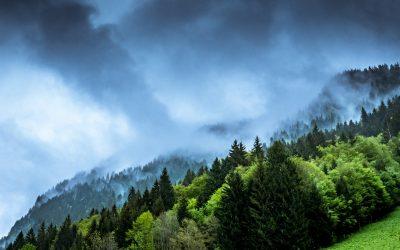 Tras la cumbre social por el clima – Biotropía