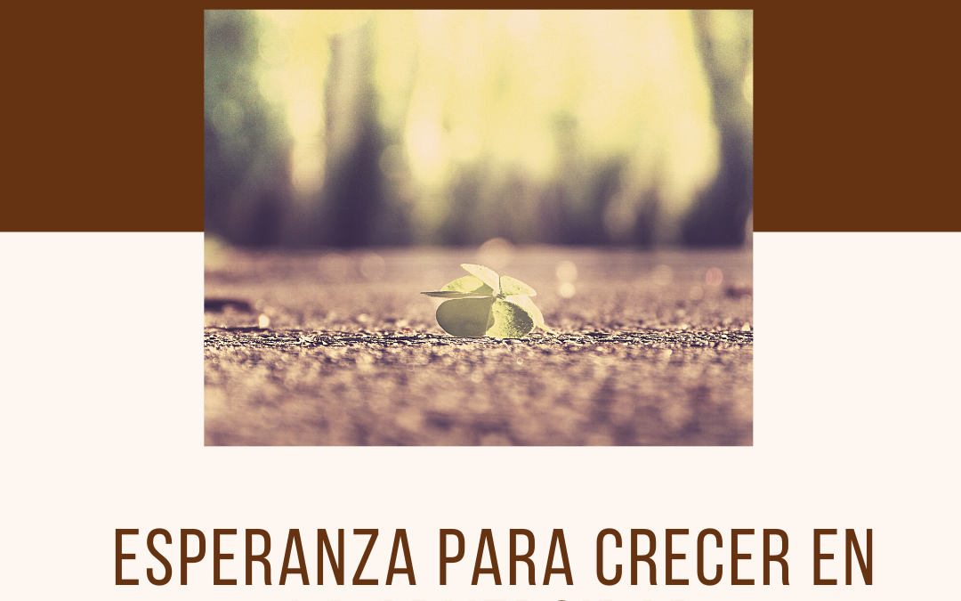 María junto a la cruz – Por Manuel Pérez