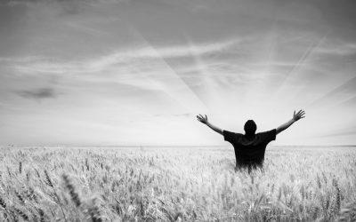 Diferentes modos de rezar el evangelio – Camilo Llorca