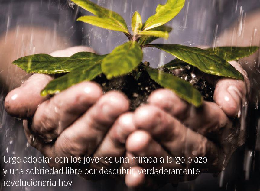 PARA TENER VIDA EN ABUNDANCIA… – Pedro J. Jiménez