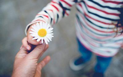 Domingo 25 ciclo A – Suplemento de generosidad – Iñaki Otano