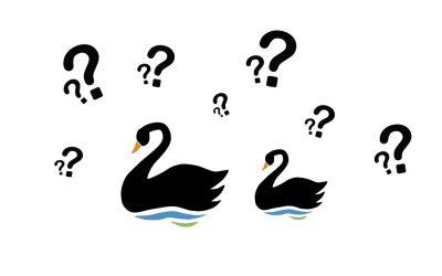 El cisne negro y el impacto de lo altamente improbable – Miguel Jaimes